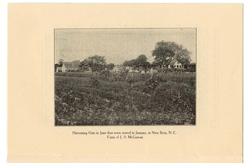 """Harvesting Oats in June that were sowed in January, at New Bern, N.C., Farm of J.S. McGowan."""